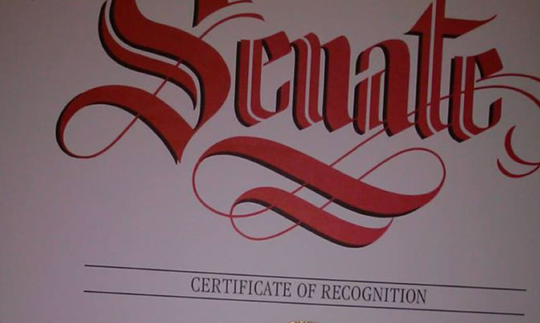 Senate Recognition Award