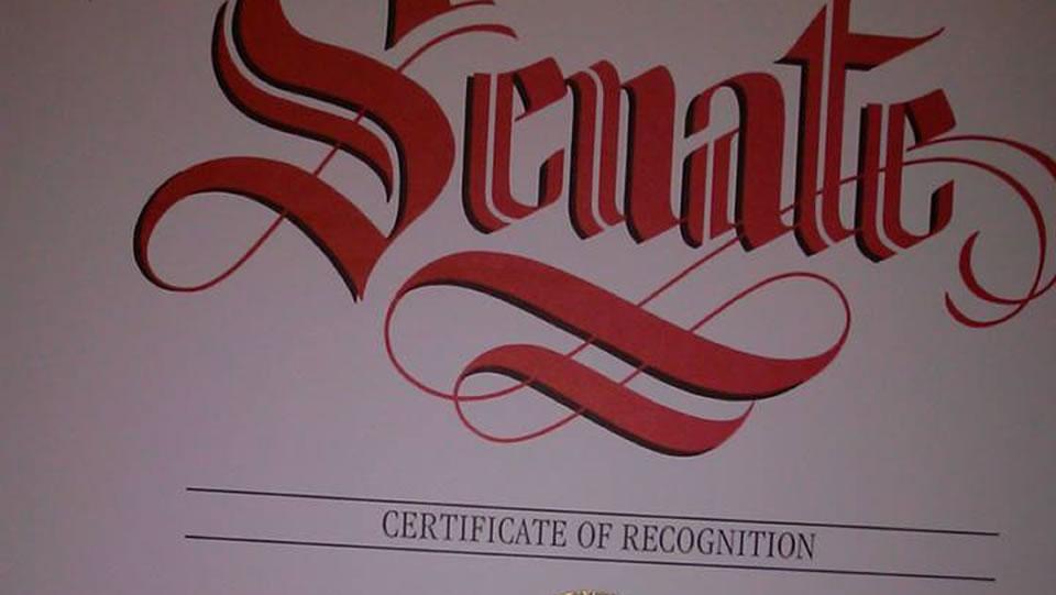 Senate Recognition Award